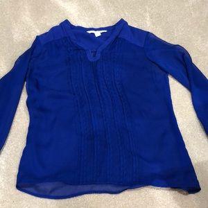 DVF long sleeve blue sheer blouse. NWOT